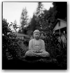 Guerneville_Buddha