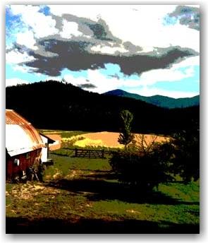 Duffy's farm