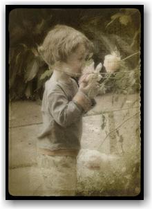 Childhood's garden